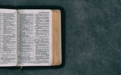 Medytacja – Niedziela Miłosierdzia Bożego